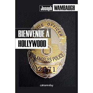 bienvenue a hollywood